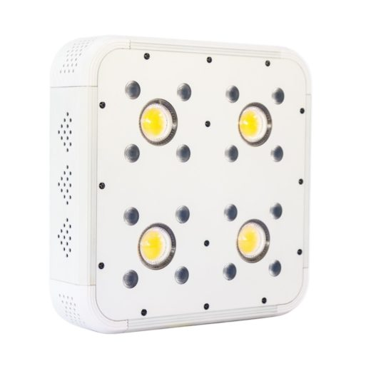Panel led Apollo Evolution 4 COB : SMD 127W